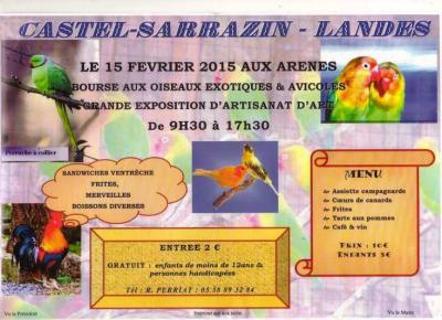 Expo oiseaux 2015 amicale