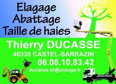 Elagage ducasse